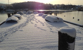 winter in woods hole