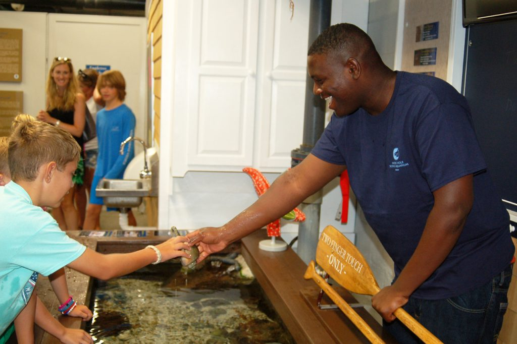 Woods Hole Aquarium intern helping child
